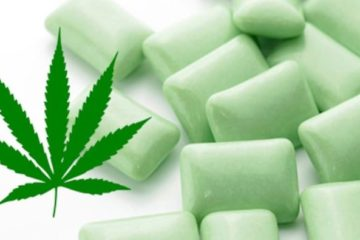 Marijuana Chewing Gum Relieves Fibromyalgia Pain