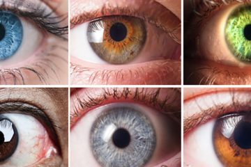Science: Your Eye Color Reveals a lot about You