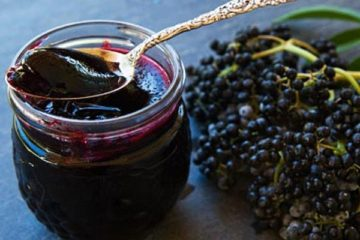 Mother Nature's Tamiflu- Elderberry Extract