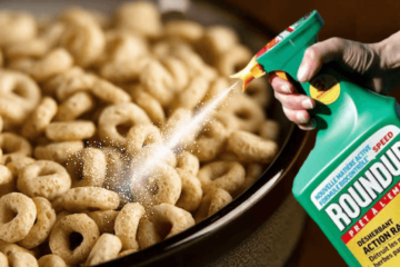 Glyphosate in Food: Full List of Products that Contain this Cancerous Chemical