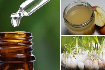 5 Natural Antibiotics: More Effective than Over-the-Counter Meds!