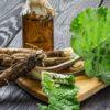 7 Surprising Burdock Root Benefits for the Body, Hair & Skin