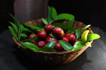The Amazing Kokum Plant: Alleviates Anxiety & Depression & Helps with Weight Loss