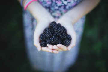 The 5 Amazing Benefits of Blackberry: It Fights Off Inflammation & Cancer