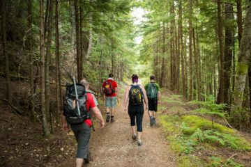 Scientists Claim: Hiking Changes Your Brain