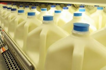 Harvard Scientists Urges People: Stop Drinking Low Fat Milk for Good