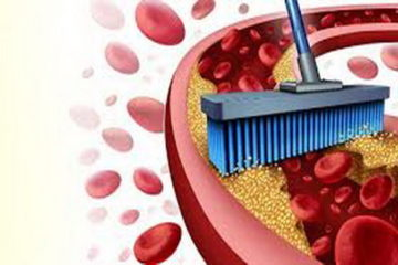 7 Easy & Potent Ways to Unclog the Arteries Naturally