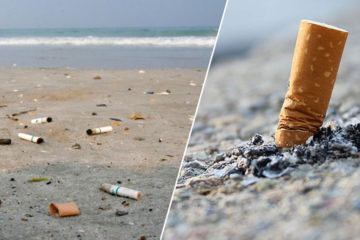 Cigarette Butts: Some of the Major Ocean Pollutants