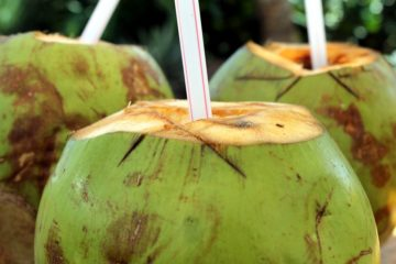 Coconut Water on the Daily: Balances the Blood Sugar & Fights Off Oxidative Damage