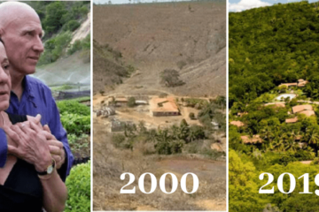 Couple Spends 20 Years Planting a Forest & Animals Came too
