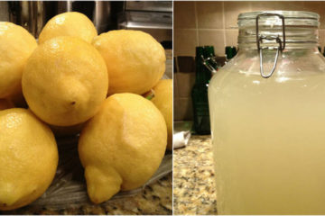 DIY Probiotic Lemonade: Strengthens the Immunity & Boosts Gut Health