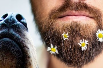 Researchers Claim: Men with Beards have more Germs than Dogs
