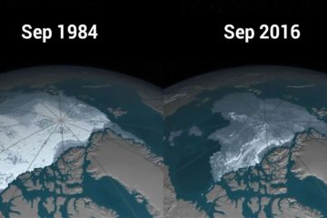 NASA Video Shows the Disappearing Arctic Polar Ice Cap