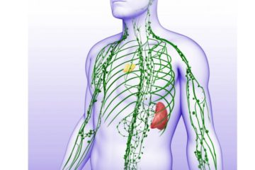 Best Natural Methods to Activate Your Lymphatic System & Strengthen Your Immunity
