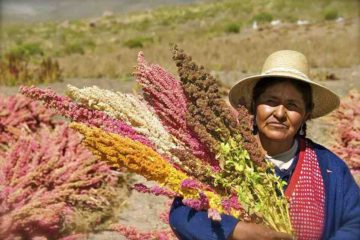 Bolivia to Produce their Own Food by 2020: Major $40 Million Investment in Local Food Production