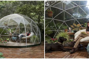 Would You Buy It? Amazon Is Selling a Garden Dome Ideal for Backyards