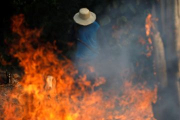 Sad News: Amazon Rainforest Burning at a ''Record Rate' & Smoke Blocks the Sun in Brazil