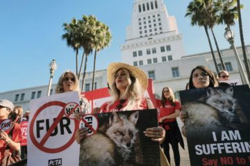 California Is First State which Bans Fur Production & Distribution