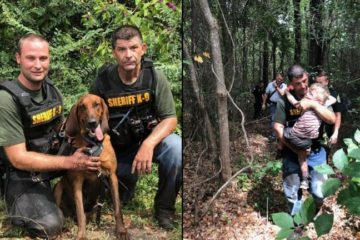 K-9 Find Missing 3-Year-Old Autistic Boy from Florida in Half an Hour