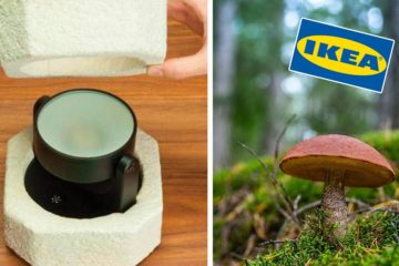 IKEA Plans to Switch from Styrofoam to Mushroom-Made Packaging