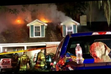 Furry Hero: Dog's Barking Saves Family from Raging Fire