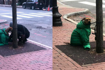 Beautiful World: Woman Gives Her Jacket to Her Dog so It Stays Warm while Waiting Outside
